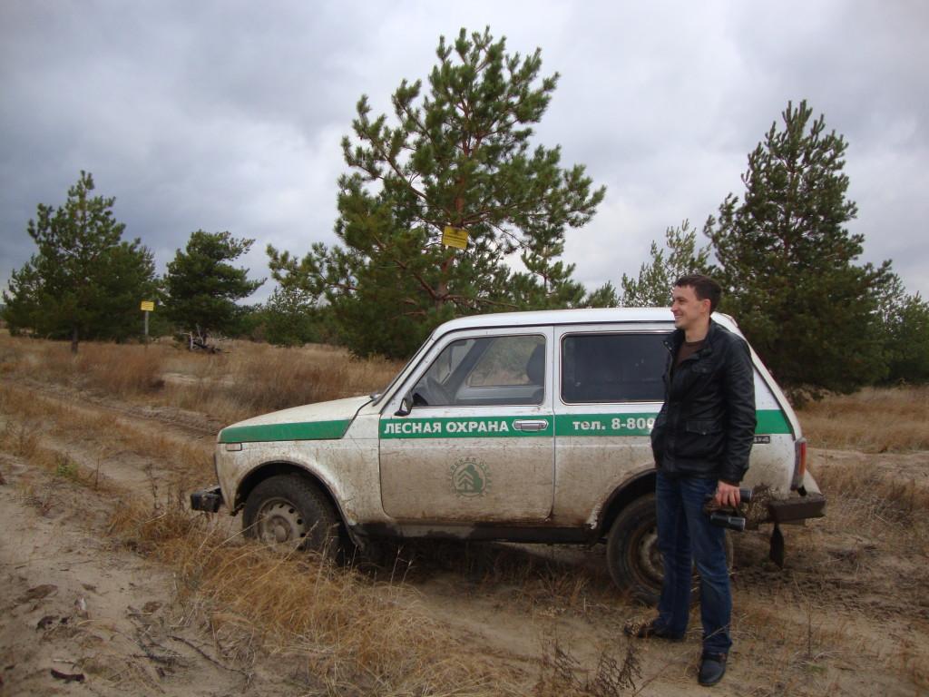 лесной инспектор