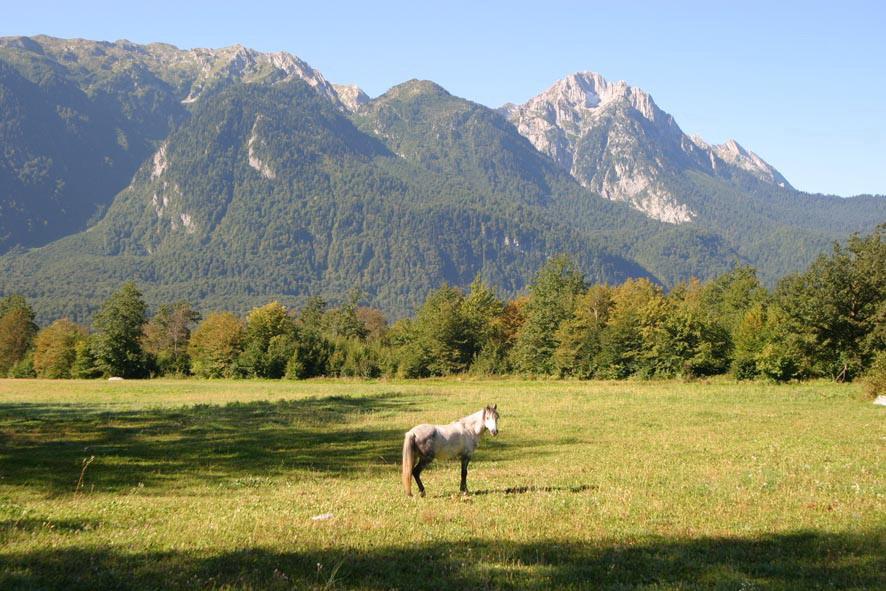 долина Псху, Республика Абхазия